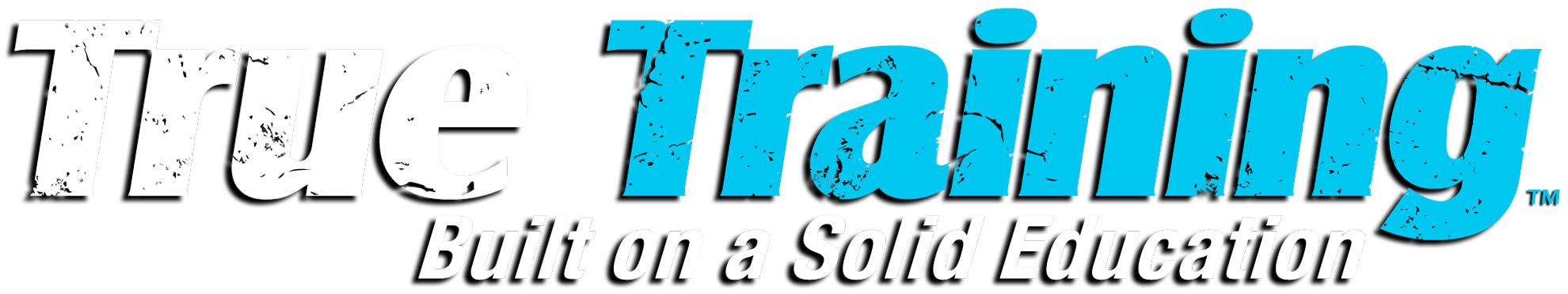 True Brand True Training Logo